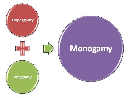 Hypergamy polygamy monogamy