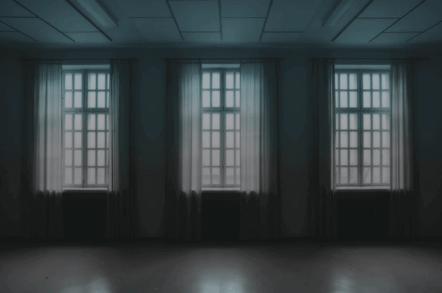 sheer fabrics window blind